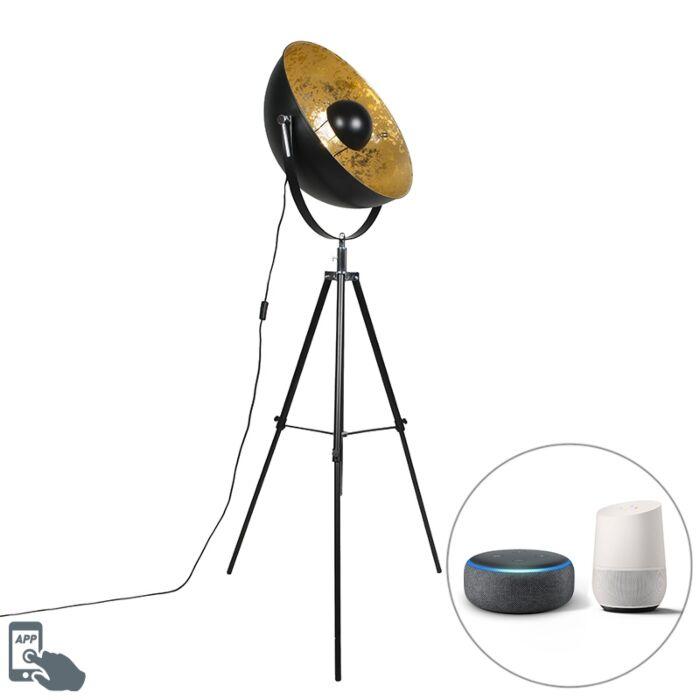 Przemysłowa-inteligentna-lampa-podłogowa-czarny-statyw,-w-tym-WiFi-A60---Magna-50-Eglip