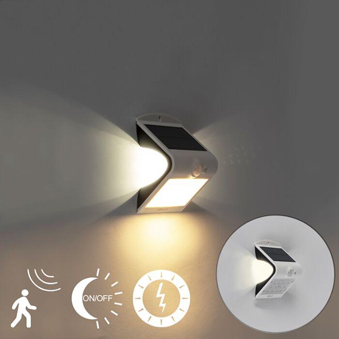 Naświetlacz-solarny-zawiera-LED-z-czujnikiem-ruchu-i-zmierzchu-1,5W---Daya