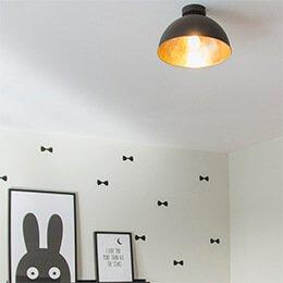 Lampyiswiatlo - Chcesz zamontować plafon